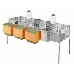 Jaula de produção com ninhos 4 compartimentos