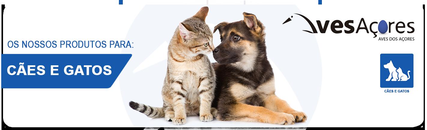 Veja aqui os nossos produtos para Cães e Gatos
