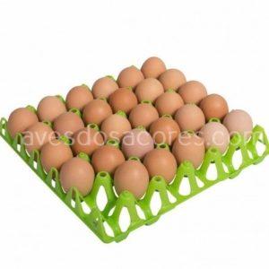 Tabuleiro plástico 30 ovos