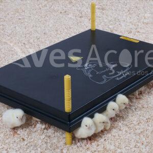 Placa de aquecimento 'Comfort' para pintos 40x60cm, 62W / 220-240V
