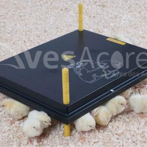 Placa de aquecimento 'Comfort' para pintos 40x50cm, 50W / 220-240V